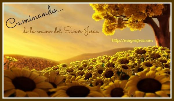 """""""CAMINANDO"""" http://grisdeluna.com"""